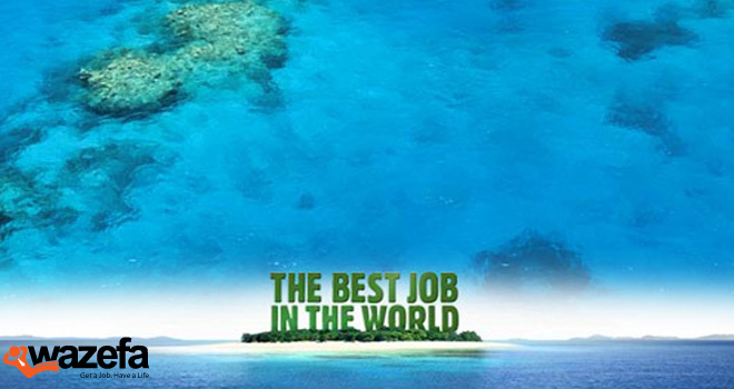 the best job of the world The best job in the world managed a return on investment that few tourism promotions have had before or since it deserved the dozens of awards it received around the world, including 8 cannes lions, and stands as a prime example of leveraging creativity online for tremendous positive returns.